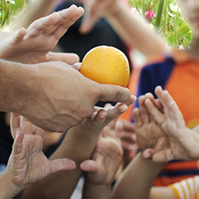 Image of an adult hand holding an orange surrounded with hands of several children